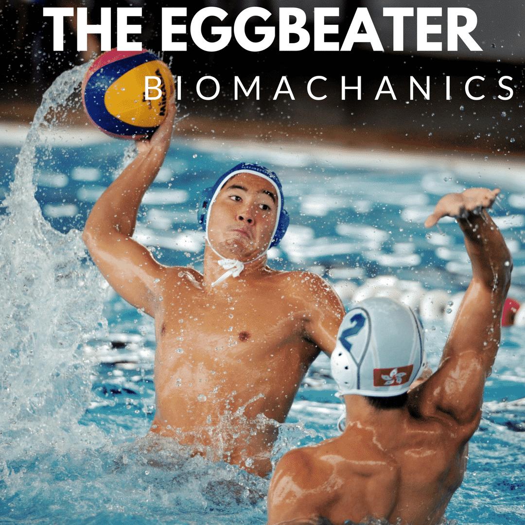 Eggbeater Biomechanics