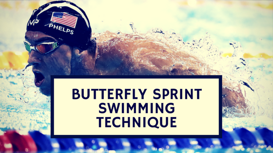 Butterfly Sprint Swimming Technique